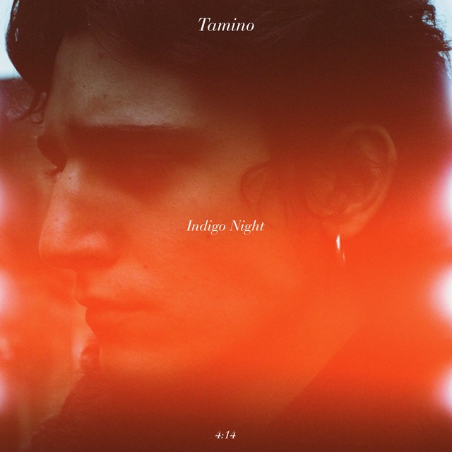 Tamino_Indigo_Night_Cover_VibesOfSilence